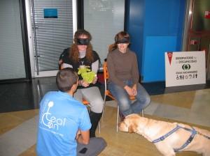 Actividad para el Observatorio de la discapacidad de Rivas Vaciamadrid.