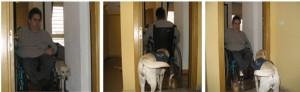 Perro de asistencia, Juan y Nela