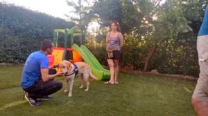 Perro de TEA entrenando con su familia
