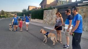Equipo de LealCan entrenando perro de asistencia para TEA con la familia